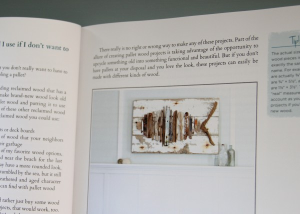 DIY Wood Pallet Book Review - Fish