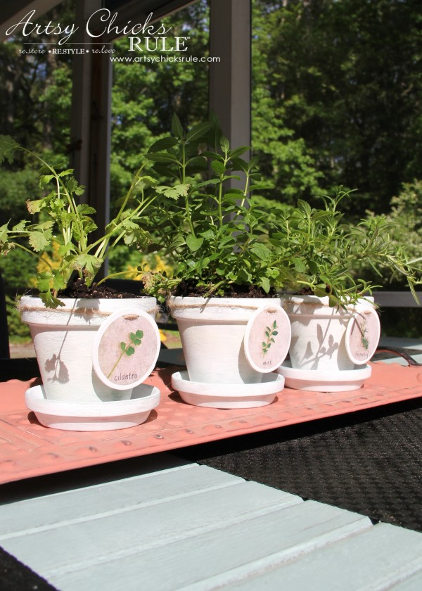 DIY Decorative Clay Pots for Herbs - In the sun -artsychicksrule.com