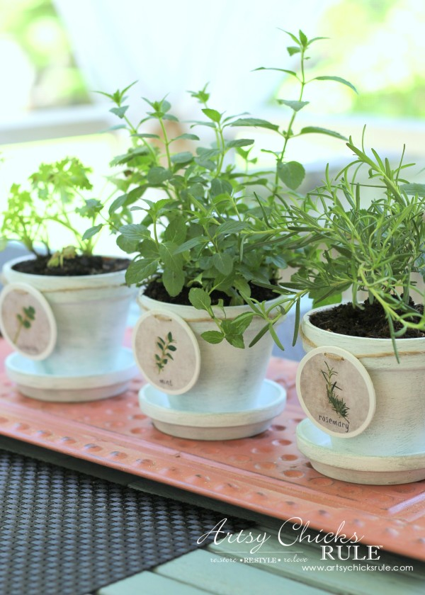 DIY Decorative Clay Pots for Herbs - Mint, Cilantro and Rosemary -artsychicksrule.com