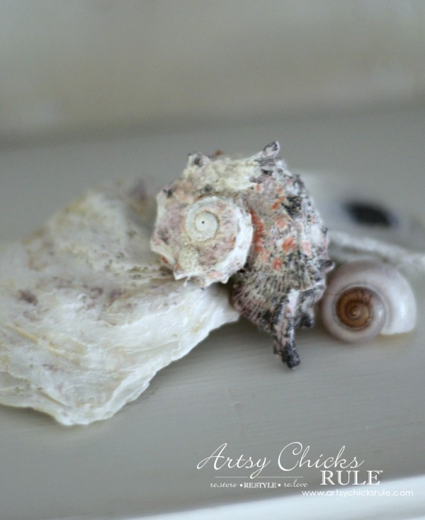 Coastal Summer Home Tour - with Balsam Hill - Seashells - #nautical #coastal #homedecor artsychicksrule.com