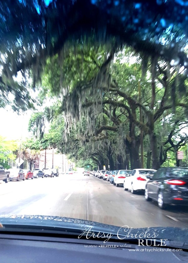 Historic Savannah GA - love the moss - artsychicksrule