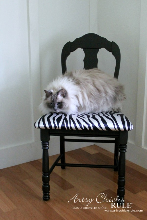 Zebra Chair Makeover (Animal Theme)  - My Ragdoll cat likes it - $5 dollar thrifty makeover - artsychicksrule