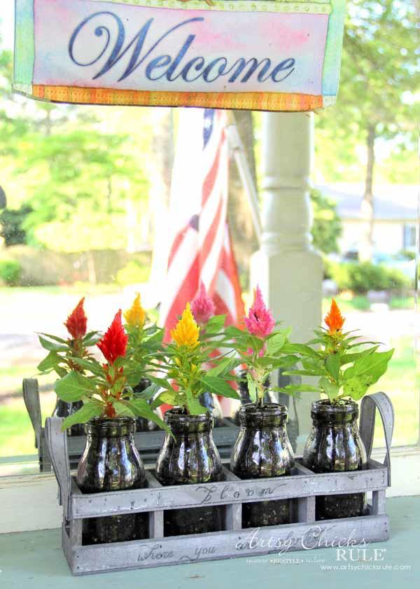 Decorating with Potted Plants - Unique Planter Ideas - DECORATIVE CELOSIA - artsychicksrule #pottedplants #planterideas