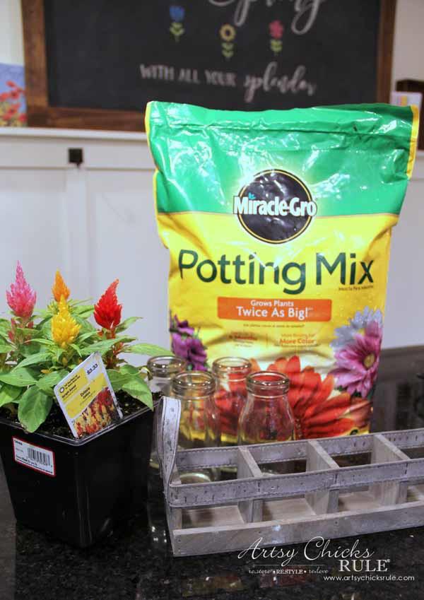 Decorating with Potted Plants - Unique Planter Ideas - ITEMS NEEDED - artsychicksrule #pottedplants #planterideas