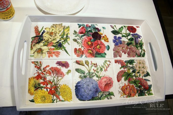 Thrifty Tray Botanical Decoupage Makeover artsychicksrule.com